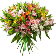 """Bouquet of alstroemerias"" in the online flower shop roza.ck.ua"