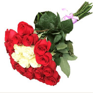 Wonderful bouquet of imported roses - flowers and bouquets on roza.ck.ua