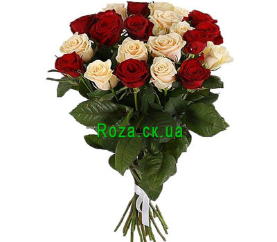 """21 red and cream roses"" in the online flower shop roza.ck.ua"
