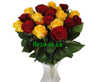 """""""19 red and yellow roses"""" in the online flower shop roza.ck.ua"""