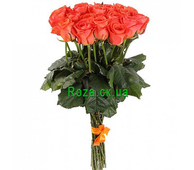 """21 coral roses"" in the online flower shop roza.ck.ua"