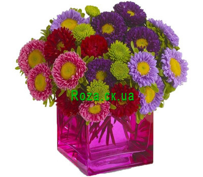 """""""Разноцветные астры"""" в интернет-магазине цветов roza.ck.ua"""