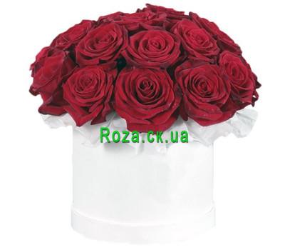 """""""19 красных роз в круглой коробке"""" в интернет-магазине цветов roza.ck.ua"""
