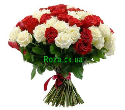 """""""51 красная и белая роза"""" в интернет-магазине цветов roza.ck.ua"""