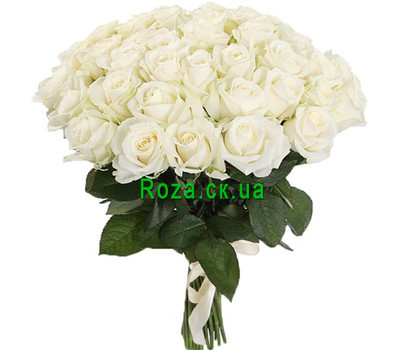 """White roses in a chic bouquet"" in the online flower shop roza.ck.ua"