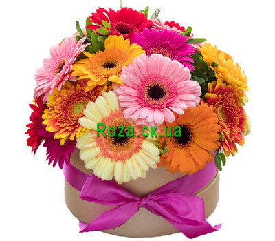 """Gerberas in a Box"" in the online flower shop roza.ck.ua"