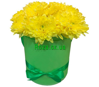 """Chrysanthemums in a box"" in the online flower shop roza.ck.ua"
