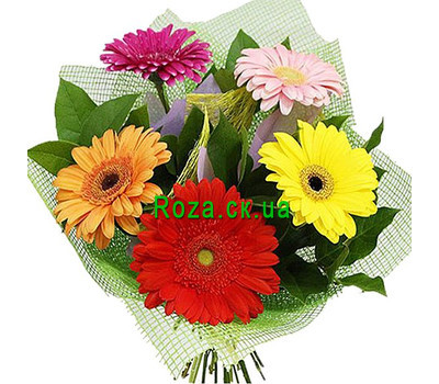 """A small bouquet of gerberas"" in the online flower shop roza.ck.ua"