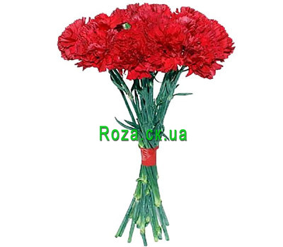 """""""A small bouquet of carnations"""" in the online flower shop roza.ck.ua"""