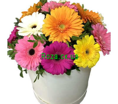 """A beautiful bouquet of gerberas in a box"" in the online flower shop roza.ck.ua"