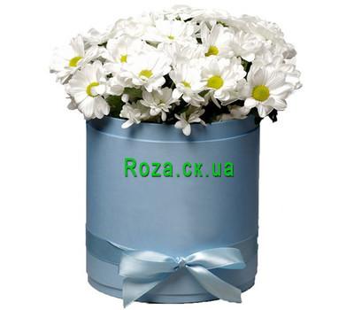 """""""Ромашковые хризантемы в коробке"""" в интернет-магазине цветов roza.ck.ua"""