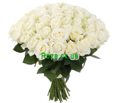 """A gorgeous bouquet of white roses"" in the online flower shop roza.ck.ua"