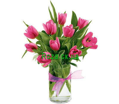 """11 pink tulips"" in the online flower shop roza.ck.ua"