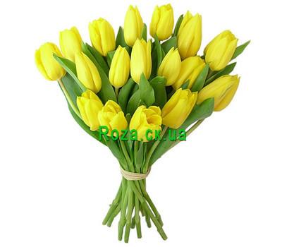 """""""19 желтых тюльпанов в букете"""" в интернет-магазине цветов roza.ck.ua"""
