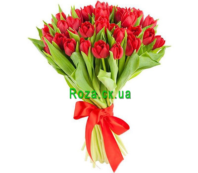 """35 red tulips"" in the online flower shop roza.ck.ua"