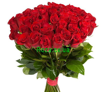 """51 red imported rose"" in the online flower shop roza.ck.ua"