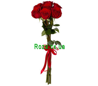 """7 import roses"" in the online flower shop roza.ck.ua"