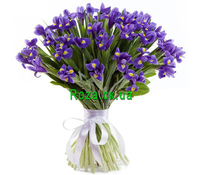 """Bouquet of 51 irises"" in the online flower shop roza.ck.ua"
