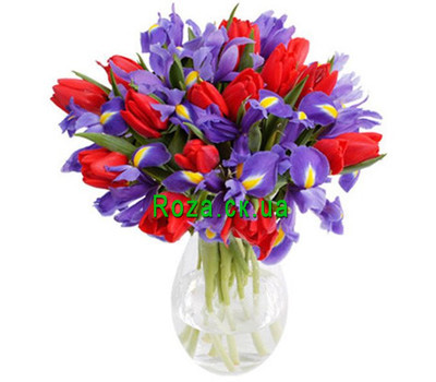 """Irises and red tulips"" in the online flower shop roza.ck.ua"