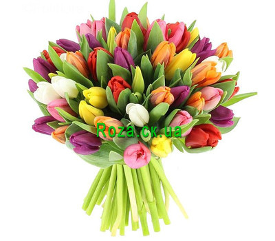 """Bouquet of multi-colored tulips"" in the online flower shop roza.ck.ua"