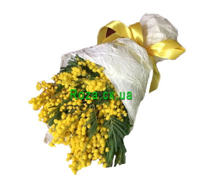 """A small bouquet of mimosa"" in the online flower shop roza.ck.ua"