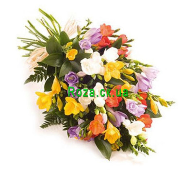 """""""Funny bouquet of freesias"""" in the online flower shop roza.ck.ua"""
