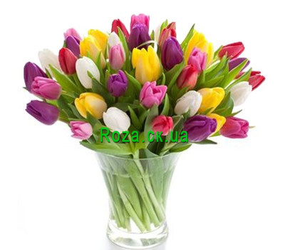 """Amazing bouquet of tulips"" in the online flower shop roza.ck.ua"