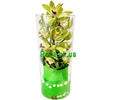 """Green orchid Cymbidium in a glass vase"" in the online flower shop roza.ck.ua"