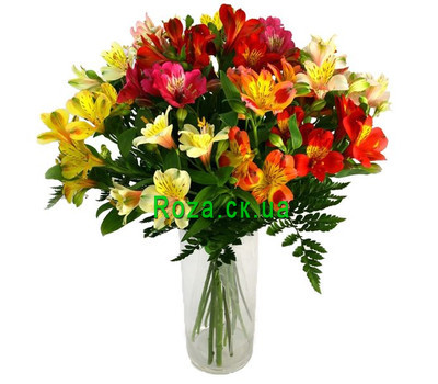 """15 alstromeries"" in the online flower shop roza.ck.ua"