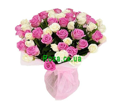 """55 white and pink roses"" in the online flower shop roza.ck.ua"