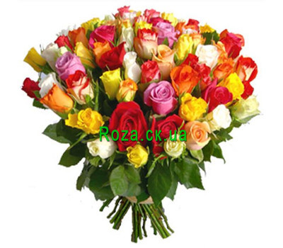 """75 roses in a bouquet"" in the online flower shop roza.ck.ua"
