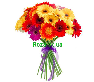 """Bouquet of gerberas Cherkasy"" in the online flower shop roza.ck.ua"