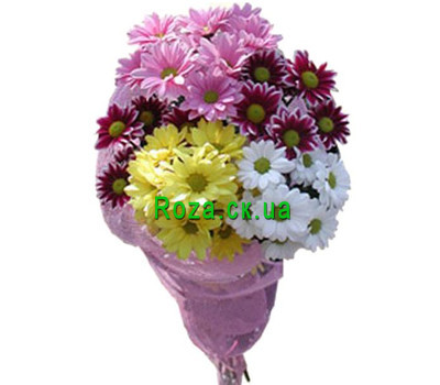 """""""Букет хризантем Черкассы"""" в интернет-магазине цветов roza.ck.ua"""