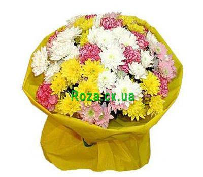 """""""Букет різнокольорових хризантем і гвоздик"""" в интернет-магазине цветов roza.ck.ua"""