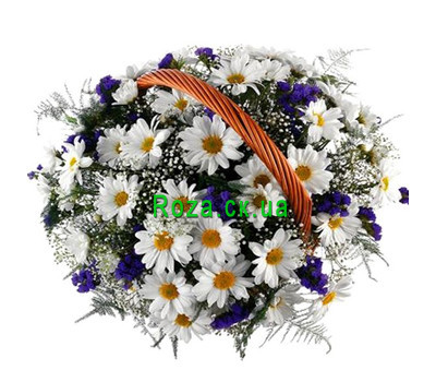 """Basket of chrysanthemum and chrysanthemums"" in the online flower shop roza.ck.ua"