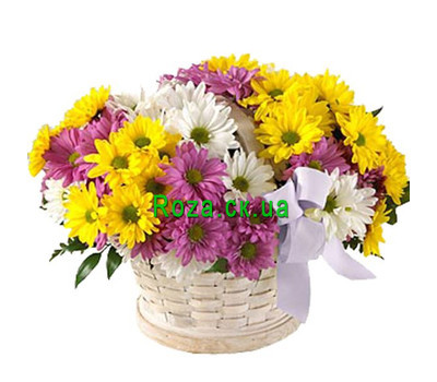 """Basket of multi-colored chrysanthemums"" in the online flower shop roza.ck.ua"