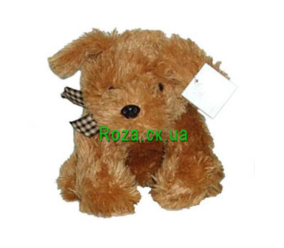"""Soft toy - Doggie"" in the online flower shop roza.ck.ua"