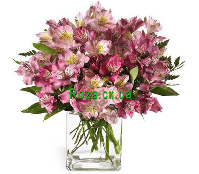 """Pink Alstroemeria"" in the online flower shop roza.ck.ua"