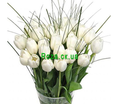 """Tulips of Cherkassy"" in the online flower shop roza.ck.ua"