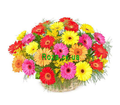 """Basket of gerberas"" in the online flower shop roza.ck.ua"