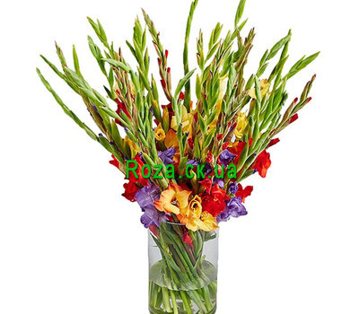 """""""35 gladiolus in a bouquet"""" in the online flower shop roza.ck.ua"""