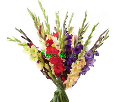 """""""Bouquet of gladiolus"""" in the online flower shop roza.ck.ua"""