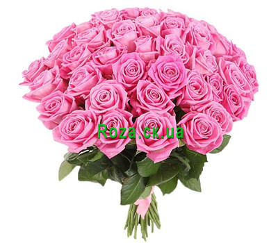 """41 розовая роза"" в интернет-магазине цветов roza.ck.ua"
