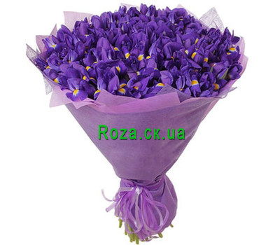 """101 ирис"" в интернет-магазине цветов roza.ck.ua"