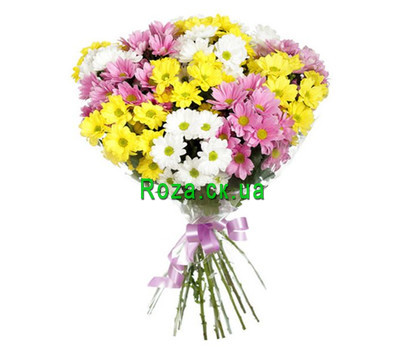 """11 multi-colored chrysanthemums"" in the online flower shop roza.ck.ua"