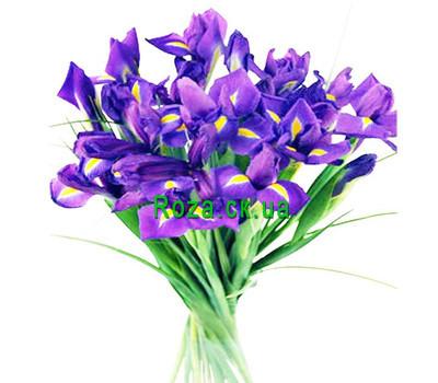 """19 irises"" in the online flower shop roza.ck.ua"