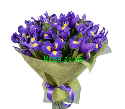 """35 irises"" in the online flower shop roza.ck.ua"