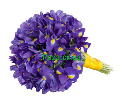 """55 irises"" in the online flower shop roza.ck.ua"