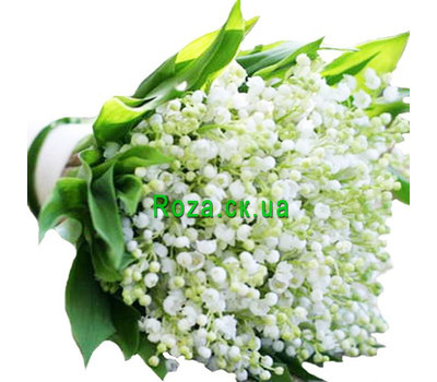 """Large bouquet of lilies of the valley"" in the online flower shop roza.ck.ua"