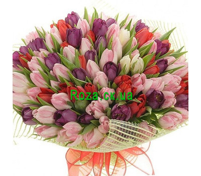 """Bouquet of 151 tulips"" in the online flower shop roza.ck.ua"